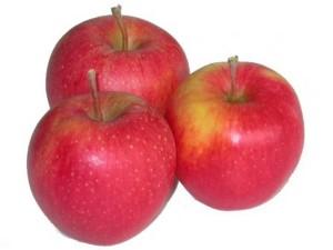 Яблоки Пинова 1