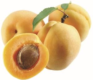 абрикос обрезка