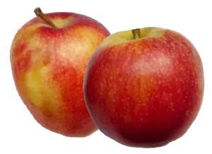 яблоко цивг