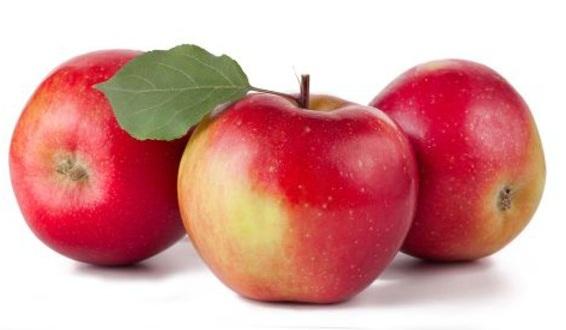 яблоки дарья
