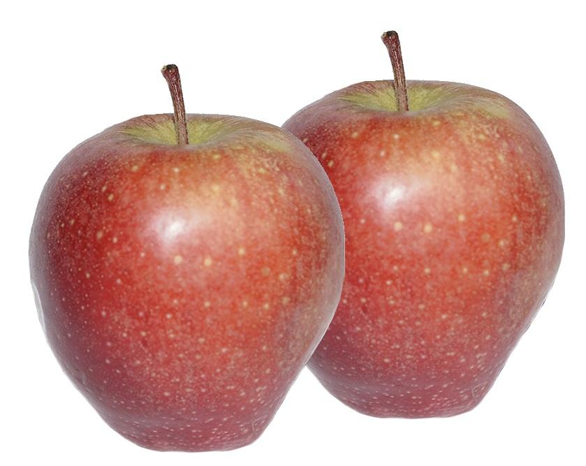 яблоко радужное