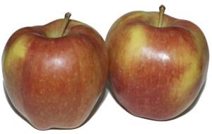яблоко старкримсон