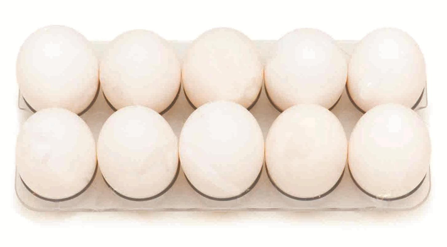 яйцо в лотке